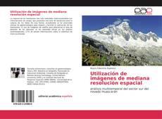 Bookcover of Utilización de imágenes de mediana resolución espacial