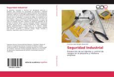 Bookcover of Seguridad Industrial