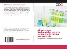 Alternativas Ambientales para la remoción de cromo hexavalente的封面