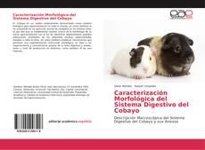 Portada del libro de Caracterización Morfológica del Sistema Digestivo del Cobayo
