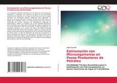 Borítókép a  Estimulación con Microorganismos en Pozos Productores de Petróleo - hoz