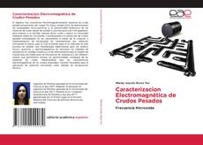 Caracterizacion Electromagnética de Crudos Pesados的封面