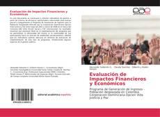 Evaluación de Impactos Financieros y Económicos kitap kapağı