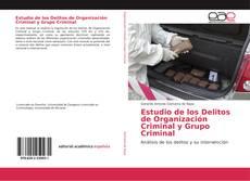Обложка Estudio de los Delitos de Organización Criminal y Grupo Criminal