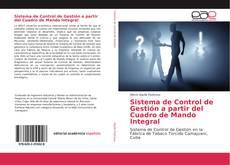 Bookcover of Sistema de Control de Gestión a partir del Cuadro de Mando Integral