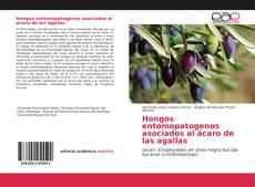 Couverture de Hongos entomopatogenos asociados al ácaro de las agallas