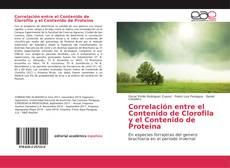 Buchcover von Correlación entre el Contenido de Clorofila y el Contenido de Proteina