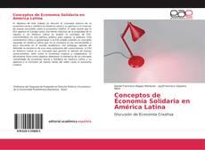 Conceptos de Economía Solidaria en América Latina的封面