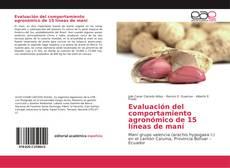 Bookcover of Evaluación del comportamiento agronómico de 15 líneas de maní