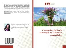Bookcover of L'extraction de l'huile essentielle de Lavandula angustifolia.