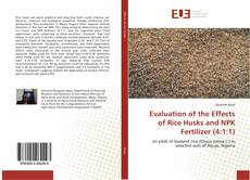 Обложка Evaluation of the Effects of Rice Husks and NPK Fertilizer (4:1:1)