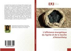 Capa do livro de L'efficience énergétique du lignite et de la tourbe d'Antanifotsy