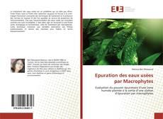 Bookcover of Epuration des eaux usées par Macrophytes