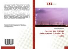 Mesure des champs électriques et Prévision de foudre kitap kapağı
