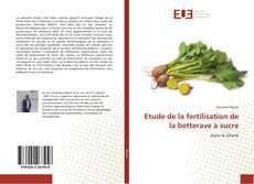 Etude de la fertilisation de la betterave à sucre的封面