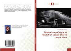 Copertina di Révolution politique et révolution sociale chez le Jeune Marx