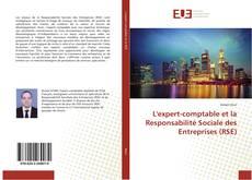 Bookcover of L'expert-comptable et la Responsabilité Sociale des Entreprises (RSE)