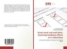 Copertina di Great work and well-done: Examinig feedback effects on a laboratory