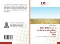 Sécurité foncière et rendement agricole au Burkina Faso:的封面