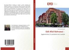 Bookcover of Sidi Allal Bahraoui :