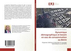Buchcover von Dynamique démographique et besoin en eau de consommation au Bénin