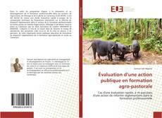 Couverture de Évaluation d'une action publique en formation agro-pastorale