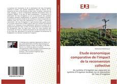 Etude économique comparative de l'impact de la reconversion collective kitap kapağı