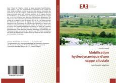 Couverture de Mobilisation hydrodynamique d'une nappe alluviale
