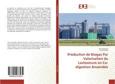 Production de Biogaz Par Valorisation du Lactosérum en Co-digestion Anaérobie kitap kapağı