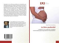 Buchcover von Le bloc pudendal