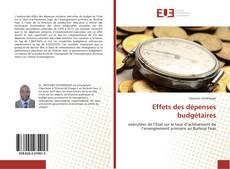 Bookcover of Effets des dépenses budgétaires