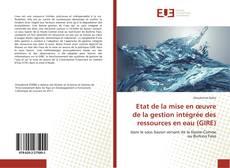 Bookcover of Etat de la mise en œuvre de la gestion intégrée des ressources en eau (GIRE)