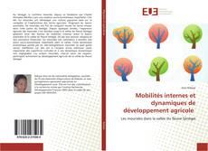 Bookcover of Mobilités internes et dynamiques de développement agricole