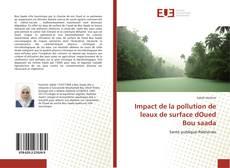 Обложка Impact de la pollution de leaux de surface dOued Bou saada
