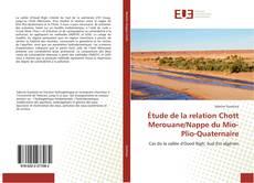 Couverture de Étude de la relation Chott Merouane/Nappe du Mio-Plio-Quaternaire