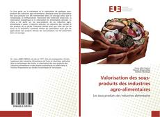 Valorisation des sous-produits des industries agro-alimentaires kitap kapağı