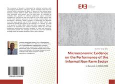 Bookcover of Microeconomic Evidence on the Performance of the Informal Non-Farm Sector