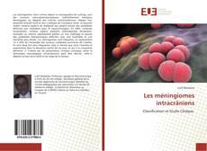 Les méningiomes intracrâniens kitap kapağı