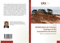 Bookcover of Modélisation de l'érosion hydrique et des mouvements de terrain