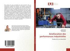 Amélioration des performances industrielles kitap kapağı