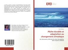 Pêche durable et adaptation au changement climatique kitap kapağı