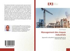 Bookcover of Management des risques industriels