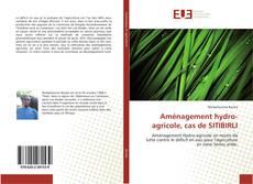 Bookcover of Aménagement hydro-agricole, cas de SITIBIRLI