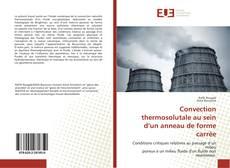Portada del libro de Convection thermosolutale au sein d'un anneau de forme carrée