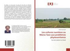 Copertina di Les cultures sucrières au Maroc face aux problèmes phytosanitaires