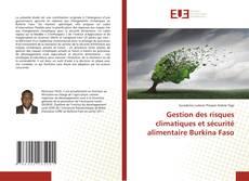 Buchcover von Gestion des risques climatiques et sécurité alimentaire Burkina Faso