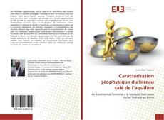Capa do livro de Caractérisation géophysique du biseau salé de l'aquifère