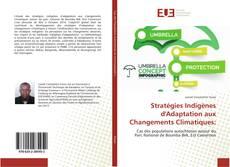 Couverture de Stratégies Indigènes d'Adaptation aux Changements Climatiques: