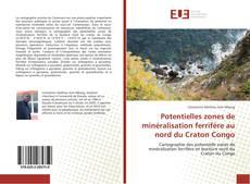 Buchcover von Potentielles zones de minéralisation ferrifère au nord du Craton Congo