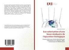 Couverture de Eco-valorisation d'une boue résiduaire de l'épuration biologique